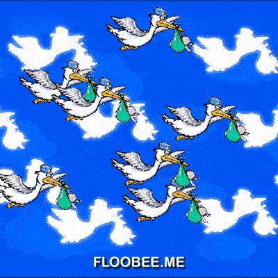 Storks Flying